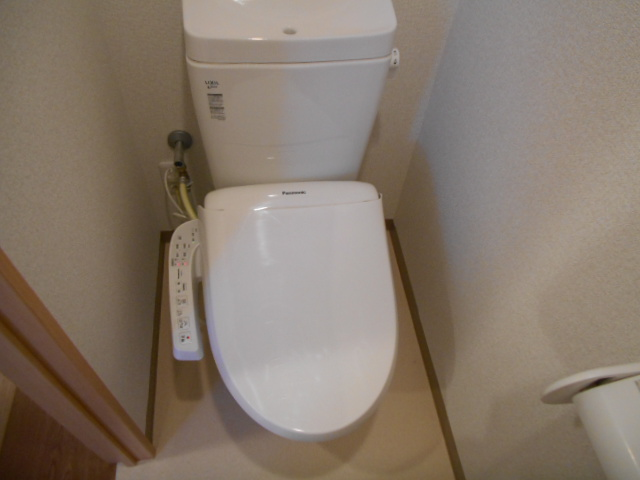 ティエラロッソ 401号室のトイレ