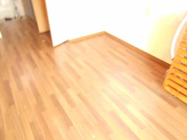 メゾンフローラル 301号室の居室