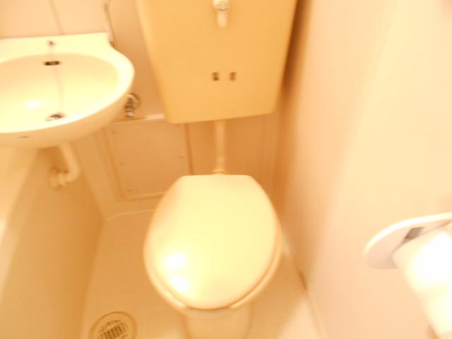 メゾンフローラル 301号室のトイレ