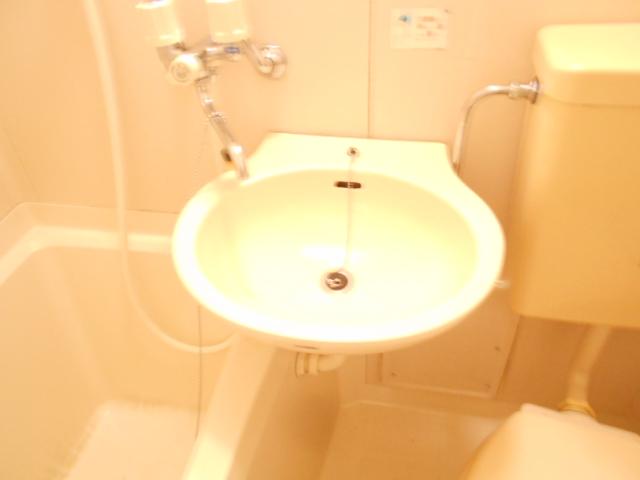 メゾンフローラル 301号室の洗面所