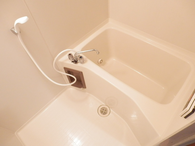 ボヌールレジダンス 202号室の風呂