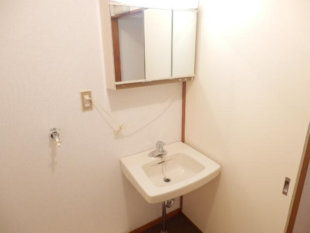 ボヌールレジダンス 202号室の洗面所