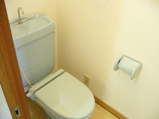 アネックス栄 101号室のトイレ