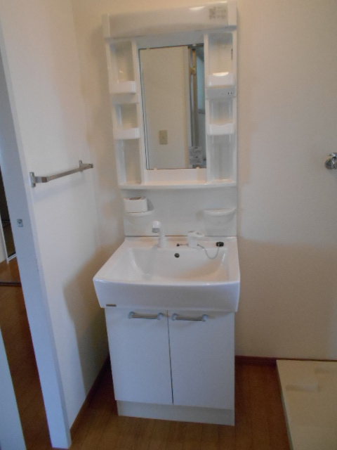 メゾン・アマービレ 403号室の洗面所