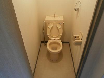 ステップⅧ 210号室のトイレ