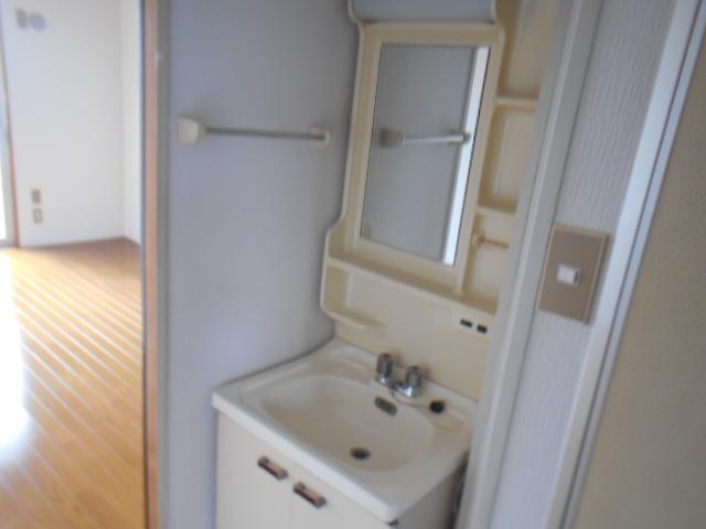 たけのこ村 203号室の洗面所