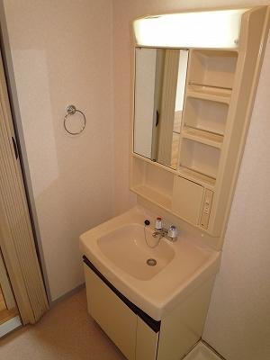 あいちビル 4B号室の洗面所