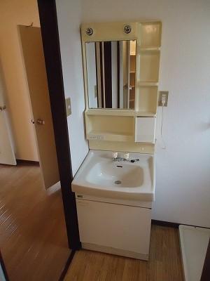 メゾン野見山台ⅡA棟 202号室の洗面所