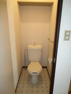 メゾン野見山台ⅡA棟 202号室のトイレ
