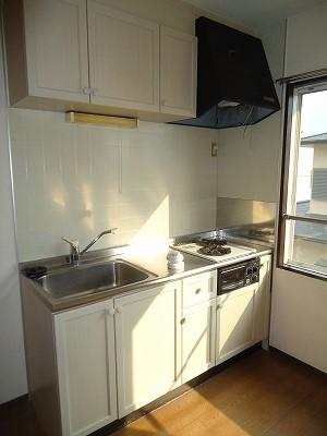 メゾン野見山台ⅡA棟 202号室のキッチン