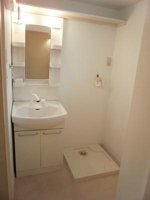 LUNA ROCCIA 207号室の洗面所
