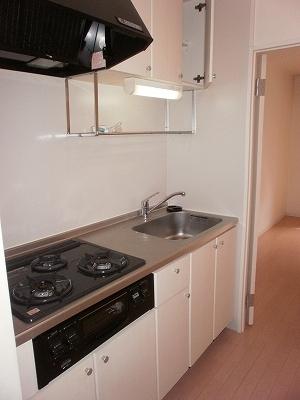 LUNA ROCCIA 207号室のキッチン