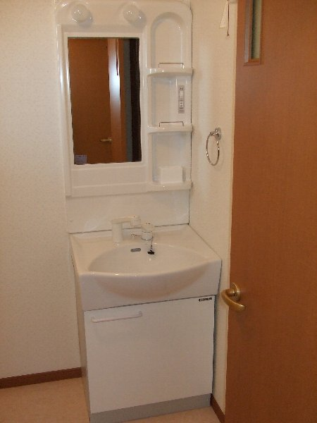 ソレイユハイヅ 105号室の洗面所