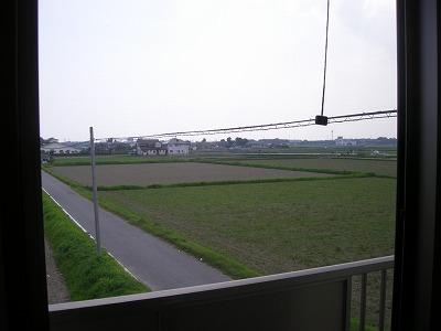 ソレイユハイヅ 105号室の景色