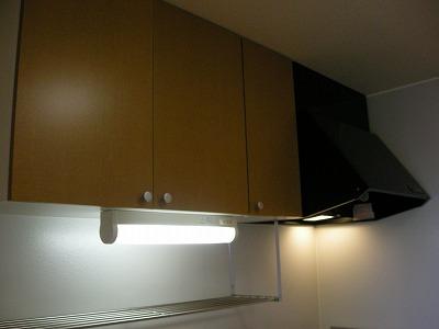 ソレイユハイヅ 105号室のキッチン