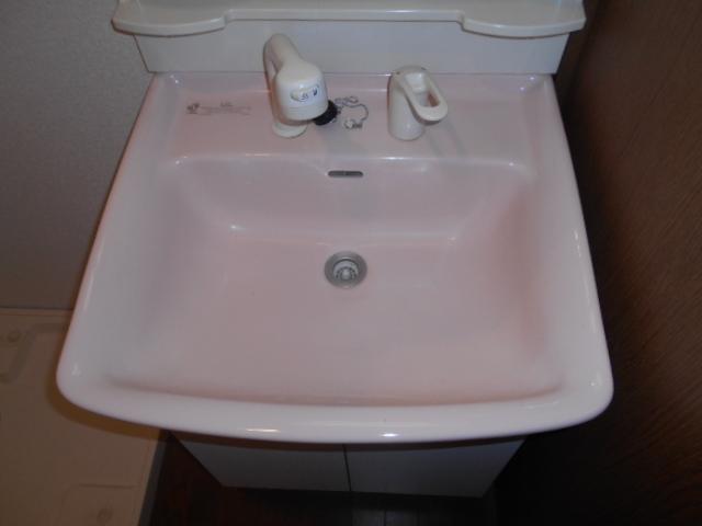 フモールナカネ 203号室の洗面所