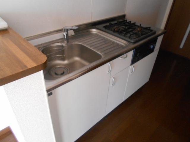 フモールナカネ 203号室のキッチン