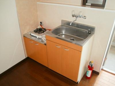 青木ヒルズα-3 203号室のキッチン