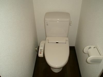 青木ヒルズα-3 203号室のトイレ