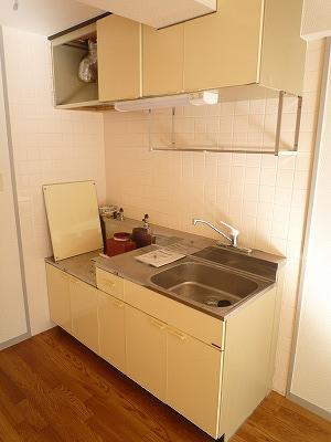 第2みゆきビル 202号室のキッチン