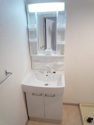 第2みゆきビル 202号室の洗面所