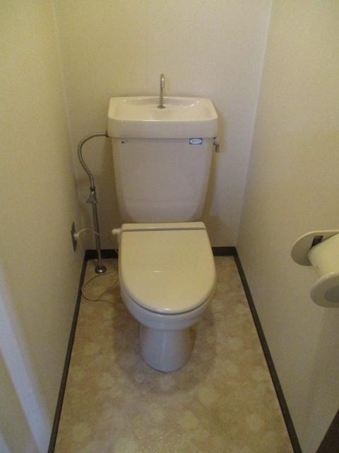 グランドォール宇都宮 208号室のトイレ