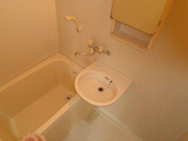 チェリーヒルズ 101号室の風呂