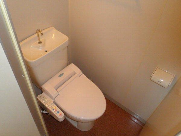 チェリーヒルズ 101号室のトイレ