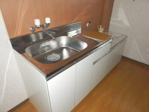 マニヤ・パーク・ハイツ 302号室のキッチン