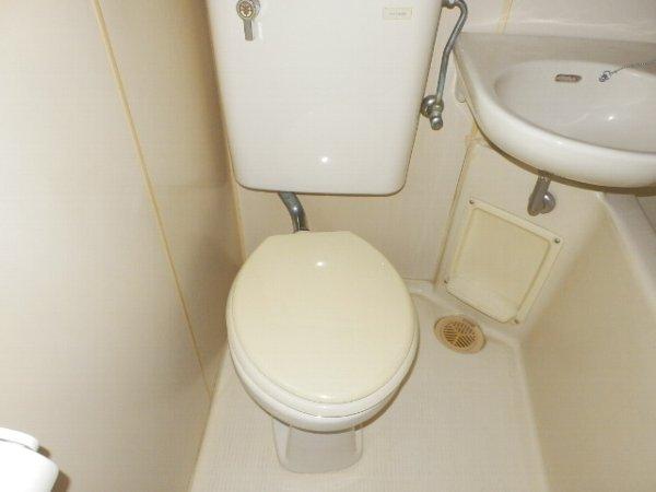 マニヤ・パーク・ハイツ 302号室のトイレ