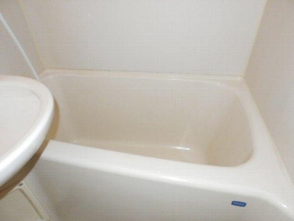 マニヤ・パーク・ハイツ 302号室の風呂