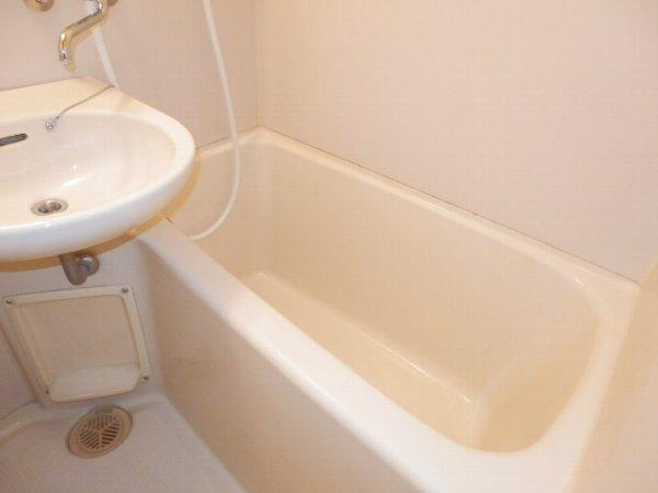 マニヤ・パーク・ハイツ 302号室の洗面所