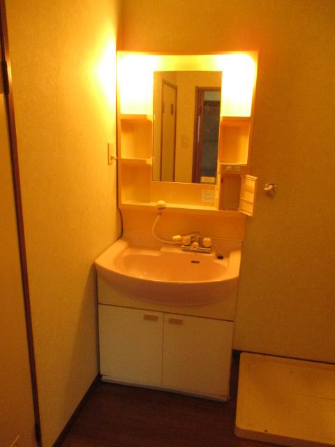 サンドビル2 203号室の洗面所