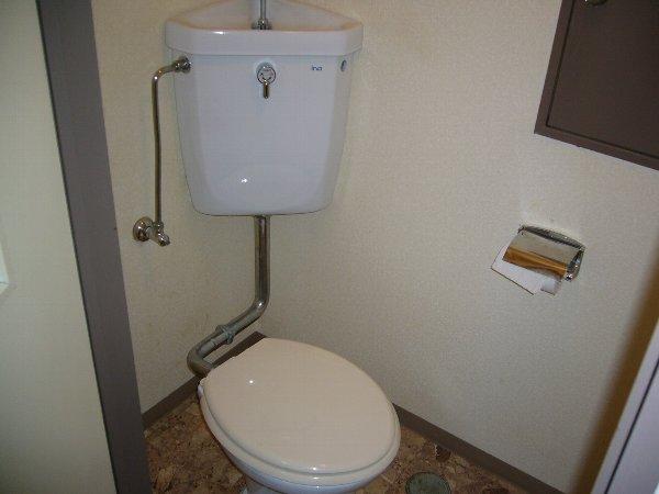 セントラルハイツ 103号室のトイレ
