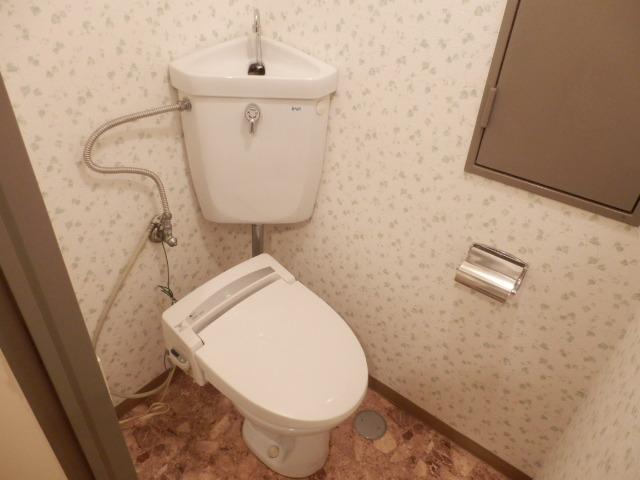 セントラルハイツ 301号室のトイレ