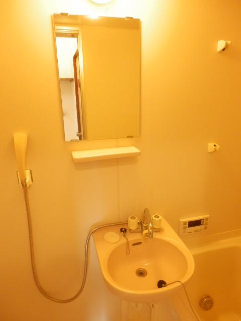 コーポ川俣 202号室の洗面所