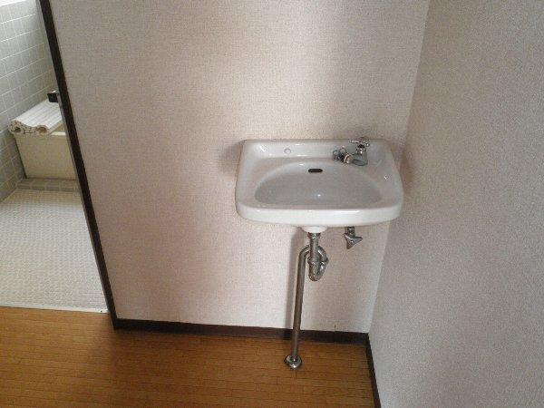ヘレンハウゼA 201号室の洗面所