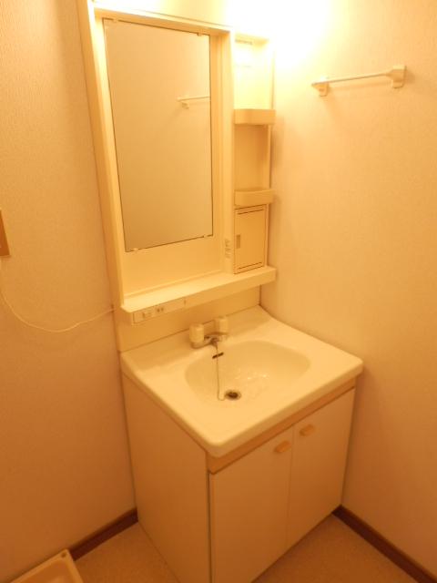 土田コーポ 201号室の洗面所