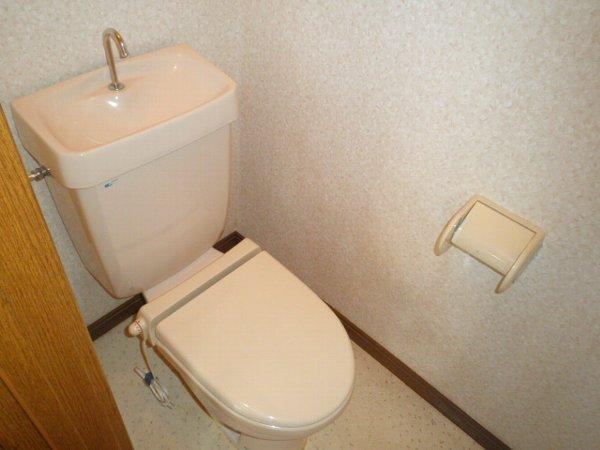 グリーンビラ福 106号室のトイレ