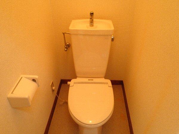 ハイツ伴 101号室のトイレ