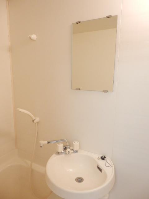 アルファーレジデンス下戸祭A 303号室の洗面所