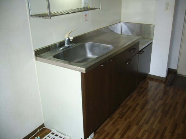 白石コーポ 203号室のキッチン