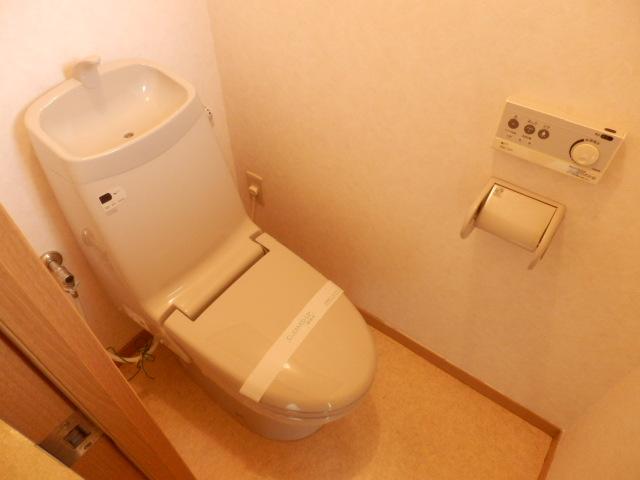 メゾン戸祭 202号室のトイレ