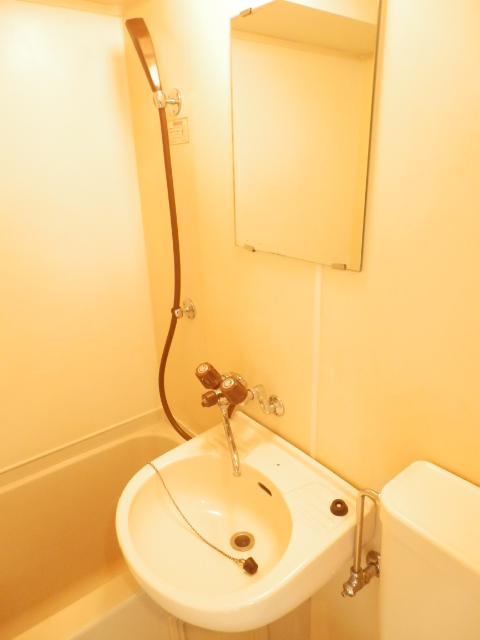 宇都宮ダイカンプラザスポーツメント 719号室の洗面所
