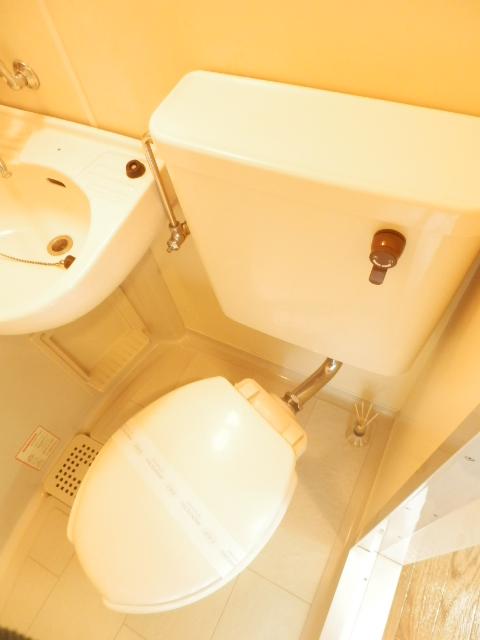 宇都宮ダイカンプラザスポーツメント 719号室のトイレ