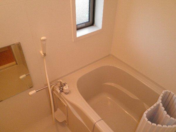 東栄ハイツB 105号室の風呂
