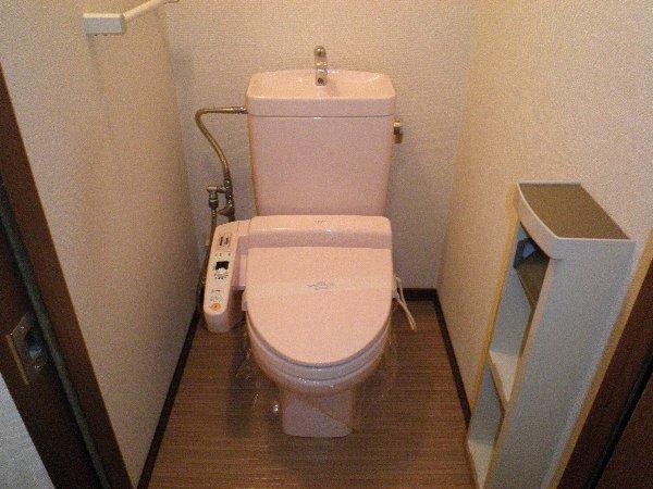Tグランハウス 202号室のトイレ