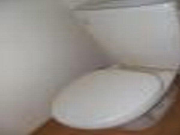 宝積寺ハイツN 101号室のトイレ
