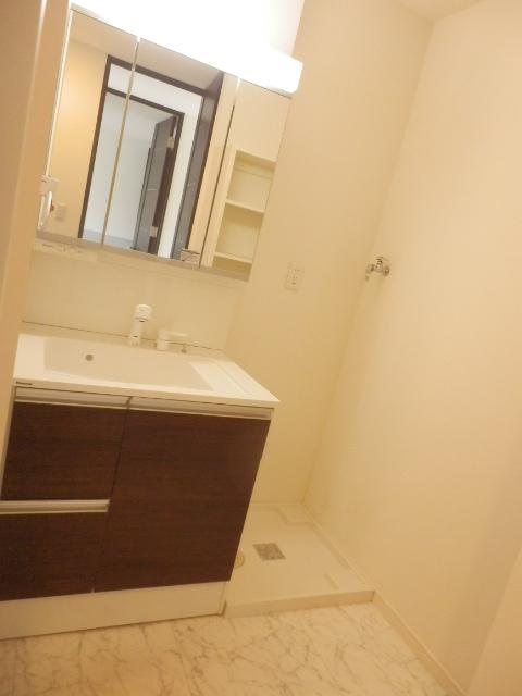 メゾン・イワカミA 101号室の洗面所