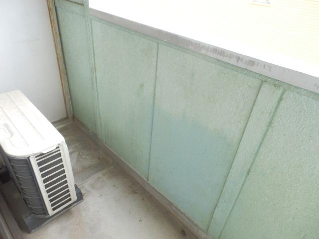 メゾンドココ 307号室のバルコニー
